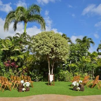ガーデンウエディング シンボルツリー
